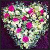 Victoria's Flowers
