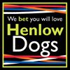 Henlow Dogs