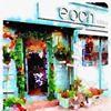 Eden Floral Design