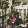 Kilmore Florist