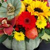Holland House Flowers