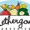 Nethergong Nurseries