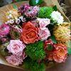 Roberta piante e fiori