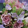 Fleurs in Horsham