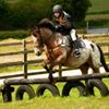 Cornwall Riding Academy at Wheal Buller Riding School