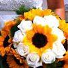 Amici fiori