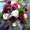 Hollyhocks Florist