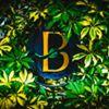 The Botanica Bar & Bistro