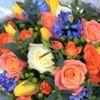 Hannah Mai's Flowers at Collins' Nursery