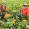 Pumpkin Works
