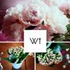 Weaver of Images London & UK Wedding Photographer