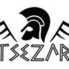 TSEZAR
