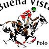 Buena Vista Polo