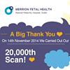 Merrion Fetal Health
