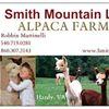 Smith Mountain Lake Alpaca Farm
