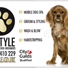 K9-Style Professional Dog Grooming
