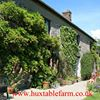 Huxtable Farm Bed and Breakfast, Devon