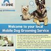 K9 Shine Dog Grooming Services
