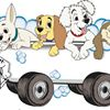Saints Dog Grooming