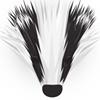 Lancashire Badger Group
