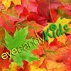 Eye Candy Kids Delafield
