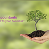 DMO Accountants