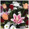 Mandy's Flirtatious Flowers