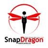 SnapDragon Associates, LLC