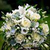 Jack Haddon Weddings