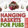 Hanging baskets for pubs