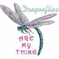 Dragonfly English Kindergarten