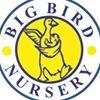 Big bird nursery