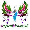 Tropicalbird.co.uk
