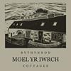 Bythynnod Moel Yr Iwrch Cottages, Snowdonia