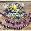 Bonderosa Lodge