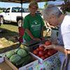 Rolla Saturday Farmer's Market