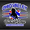 The Ohio Valley Friesian Horse Association