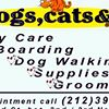 DOGS, CATS & CO.