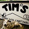 Tim's Stray Dog Cantina