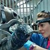 Ruth Squance Equine Dental Technician BEVA Qualified