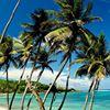 Sugar Reef Bequia