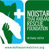 Koh Tao Animal Clinic - Noistar Foundation
