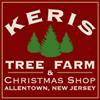 Keris Tree Farm & Christmas Shop