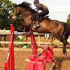 Rockley Equestrian Centre