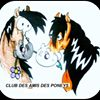 Poney Club de  Nanteuil - Association Club des amis des poneys