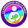 Llandrindod Wells BIB's baby and toddler feeding support group