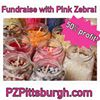 Pink Zebra with Lindsay - Independent Executive Consultant
