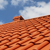 Skyline Roofing Services