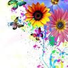 Sunflower's Creations