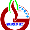 Electronosoft Services Private Limited